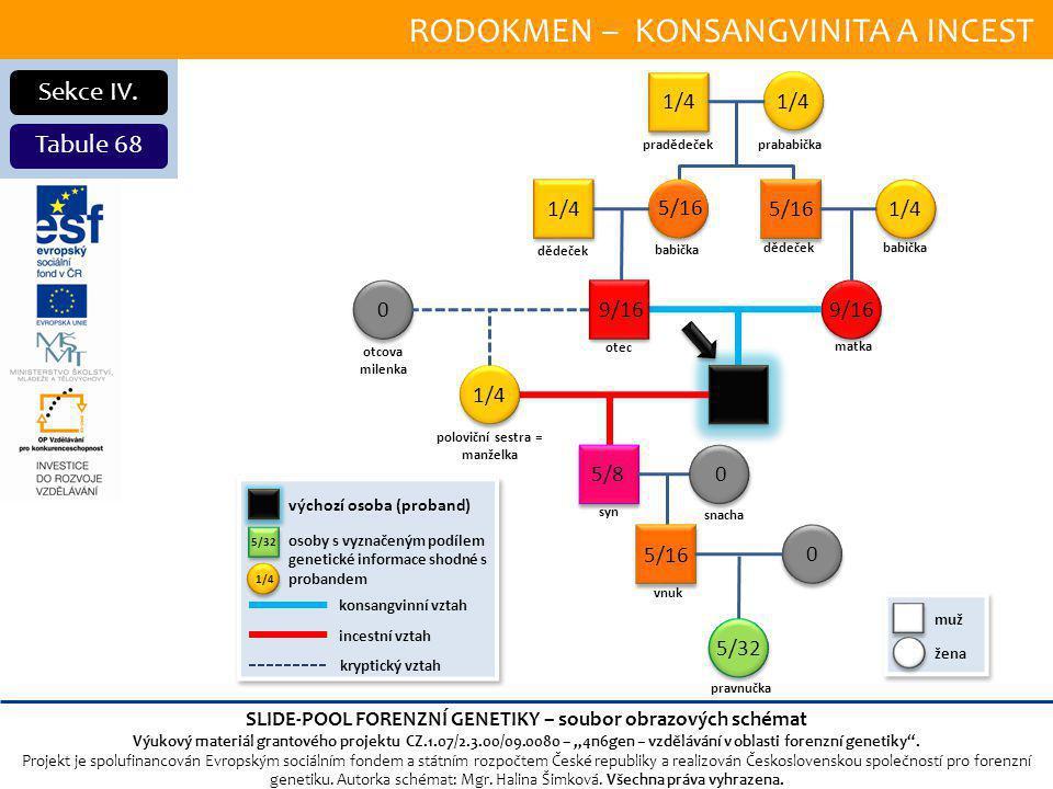 RODOKMEN – KONSANGVINITA A INCEST Sekce IV.