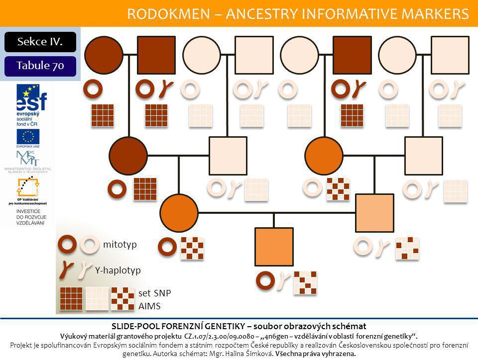 RODOKMEN – ANCESTRY INFORMATIVE MARKERS Sekce IV.