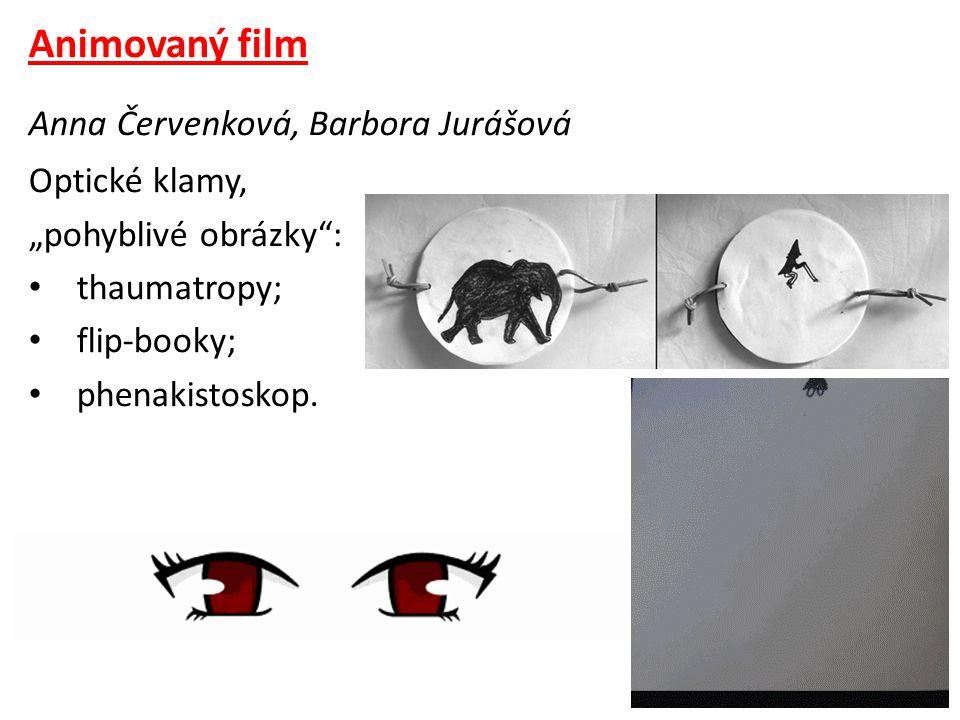 """Animovaný film Anna Červenková, Barbora Jurášová Optické klamy, """"pohyblivé obrázky : • thaumatropy; • flip-booky; • phenakistoskop."""