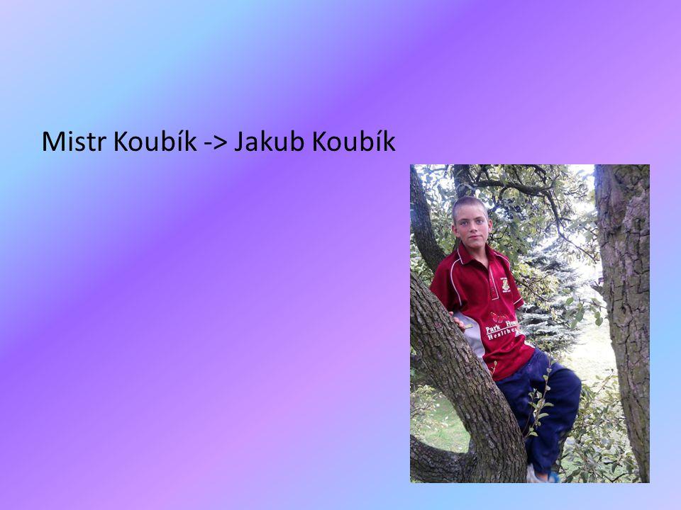 Mistr Koubík -> Jakub Koubík