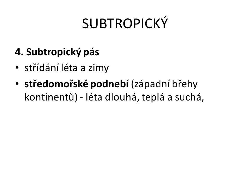 SUBTROPICKÝ 4.