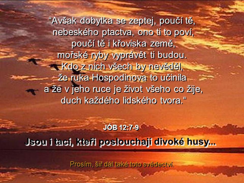 …abychom se poučili od těch krásných Božích tvorů, stačí pouze zastavit se a pozorně naslouchat a hledět, aby Hospodin mohl odkrýt před námi své divy.