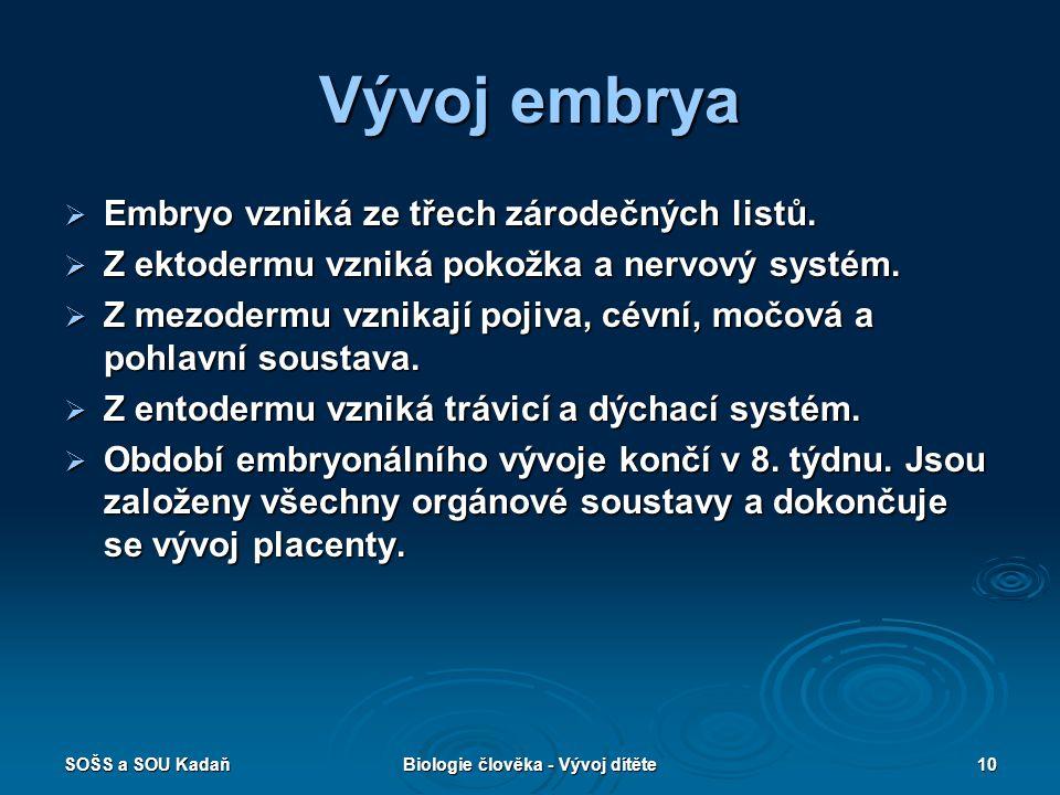 SOŠS a SOU KadaňBiologie člověka - Vývoj dítěte10 Vývoj embrya  Embryo vzniká ze třech zárodečných listů.  Z ektodermu vzniká pokožka a nervový syst