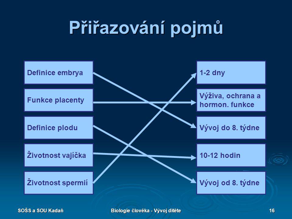 SOŠS a SOU KadaňBiologie člověka - Vývoj dítěte16 Přiřazování pojmů Definice embrya Funkce placenty Definice plodu Životnost vajíčka Životnost spermií 1-2 dny Výživa, ochrana a hormon.