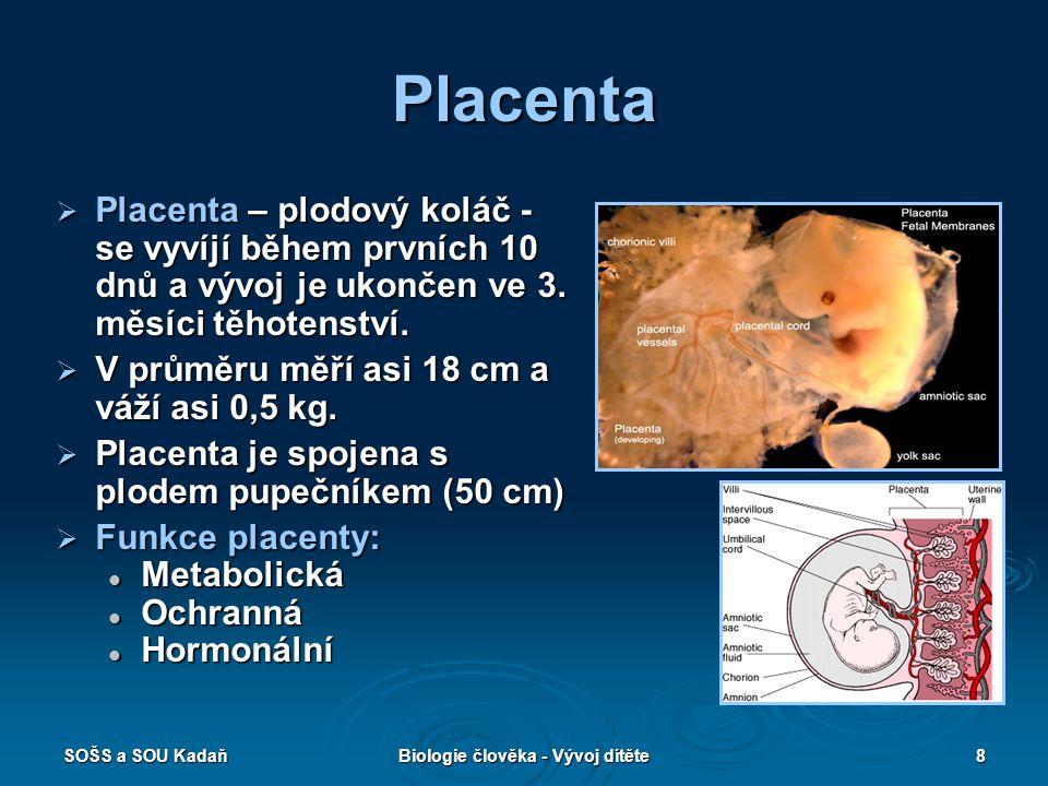 SOŠS a SOU KadaňBiologie člověka - Vývoj dítěte8 Placenta  Placenta – plodový koláč - se vyvíjí během prvních 10 dnů a vývoj je ukončen ve 3. měsíci