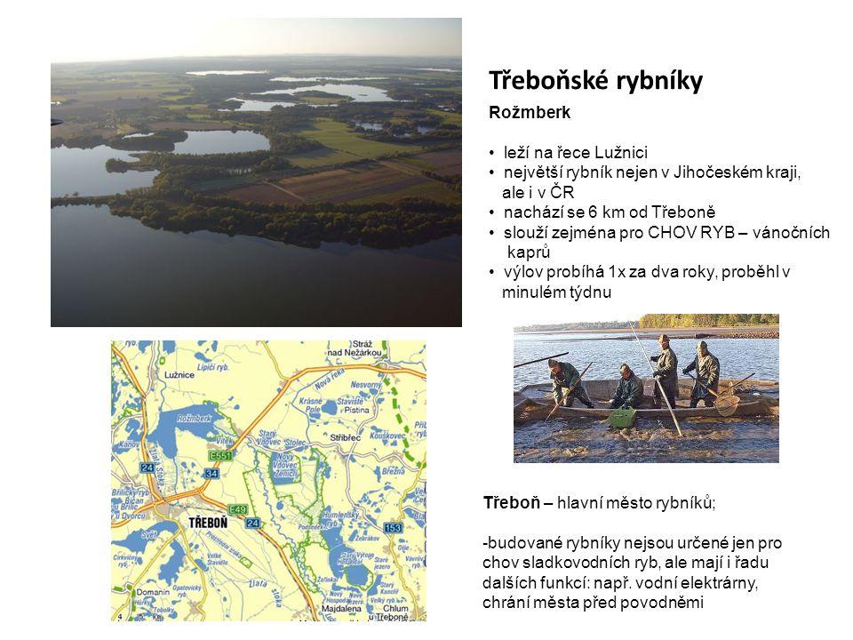 Třeboňské rybníky Rožmberk • leží na řece Lužnici • největší rybník nejen v Jihočeském kraji, ale i v ČR • nachází se 6 km od Třeboně • slouží zejména