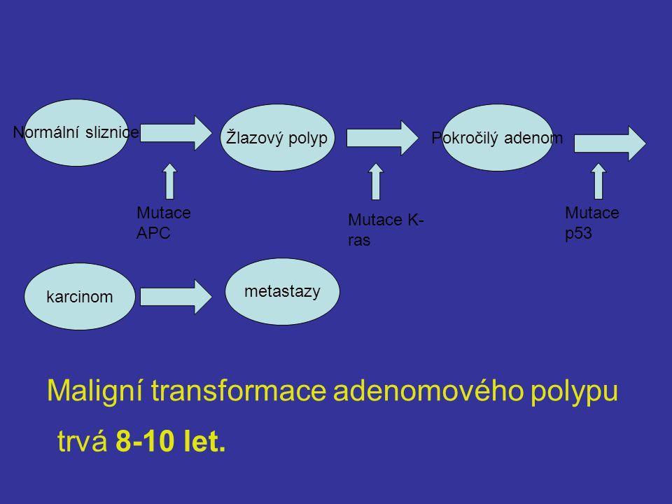 Normální sliznice Žlazový polyp karcinom metastazy Mutace APC Mutace K- ras Mutace p53 Maligní transformace adenomového polypu trvá 8-10 let.