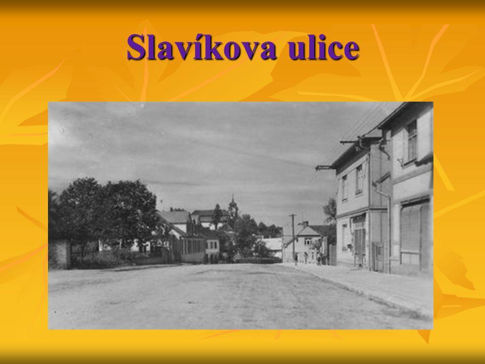Slavíkova ulice