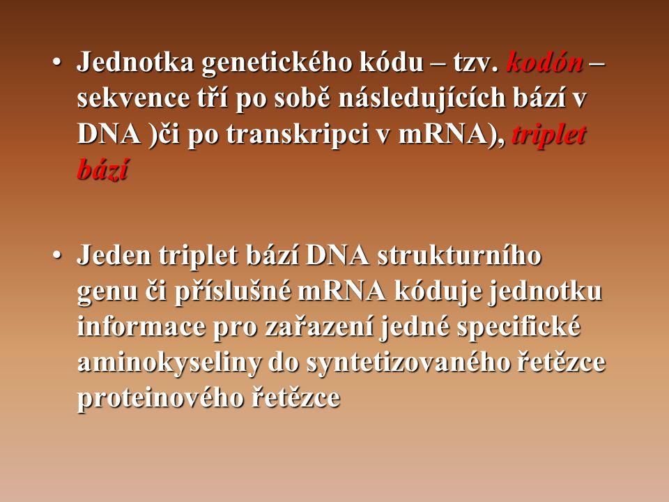 •Jednotka genetického kódu – tzv.