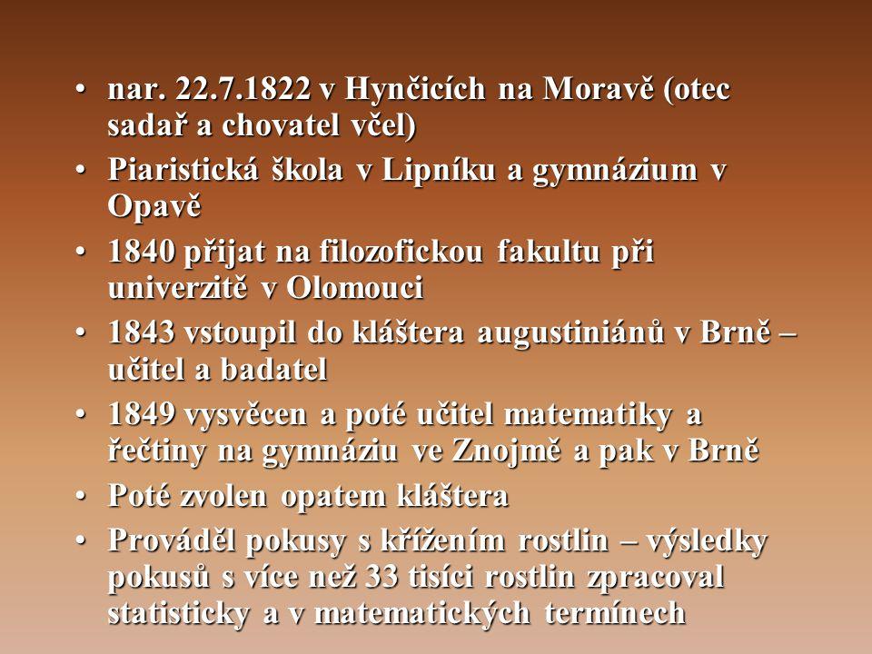 """•Vyjádřil základní pravidla dědičnosti : zákon o štěpení znaků a zákon o nezávislém sdružování znaků – označeny jako Mendlovy zákony •1865 – přednáška v Brně – """"Pokusy s rostlinnými hybridy •Nepochopena a nevzbudila ohlas •Výsledky byly uznány až za 35 let (1900) – objeveny nezávisle na sobě zákony dědičnosti třemi vědci – De Vries, Correns a Tschermak"""