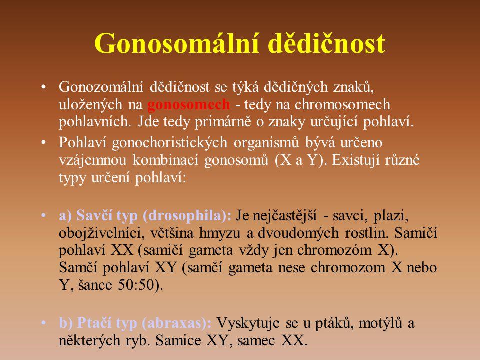 Gonosomální dědičnost •Gonozomální dědičnost se týká dědičných znaků, uložených na gonosomech - tedy na chromosomech pohlavních.