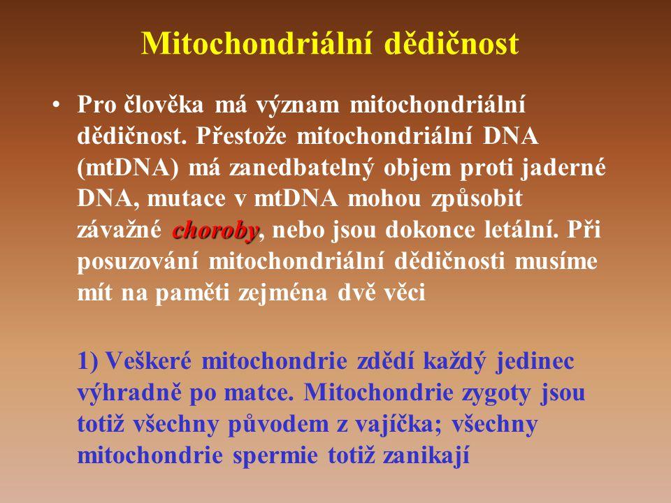 Mitochondriální dědičnost choroby •Pro člověka má význam mitochondriální dědičnost.
