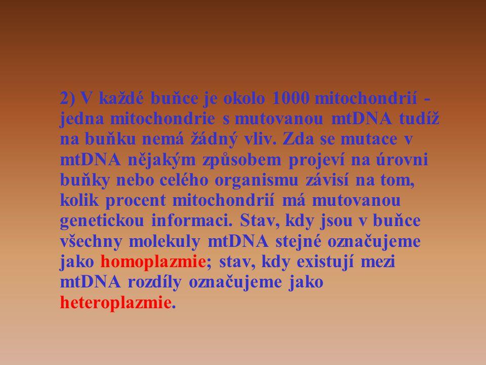 2) V každé buňce je okolo 1000 mitochondrií - jedna mitochondrie s mutovanou mtDNA tudíž na buňku nemá žádný vliv.
