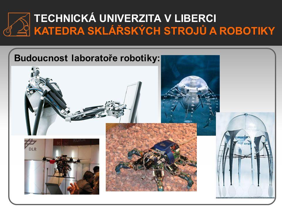 TECHNICKÁ UNIVERZITA V LIBERCI KATEDRA SKLÁŘSKÝCH STROJŮ A ROBOTIKY Budoucnost laboratoře robotiky: