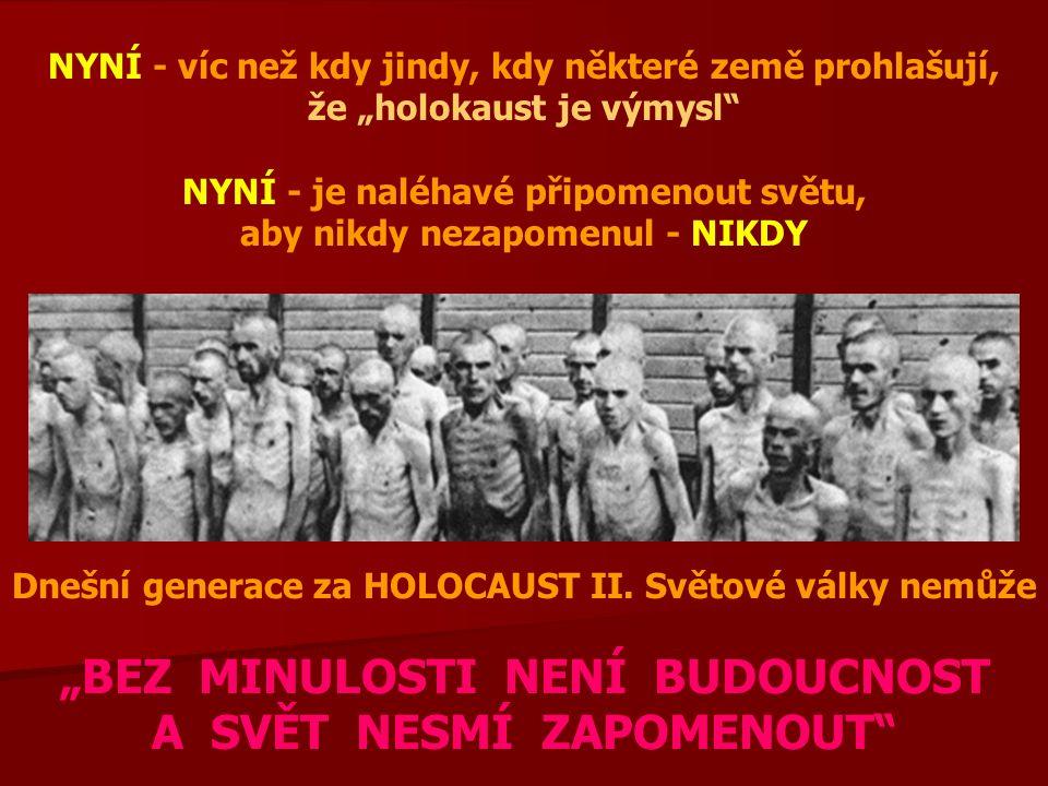 """NYNÍ - víc než kdy jindy, kdy některé země prohlašují, že """"holokaust je výmysl NYNÍ - je naléhavé připomenout světu, aby nikdy nezapomenul - NIKDY Dnešní generace za HOLOCAUST II."""