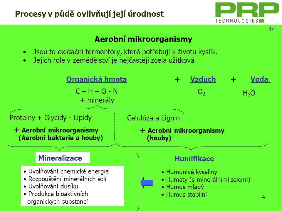 4 Aerobní mikroorganismy •Jsou to oxidační fermentory, které potřebují k životu kyslík. •Jejich role v zemědělství je nejčastěji zcela užitková + Aero