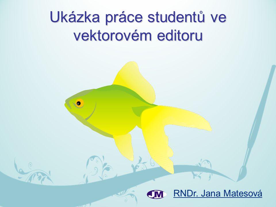 RNDr. Jana Matesová Ukázka práce studentů ve vektorovém editoru