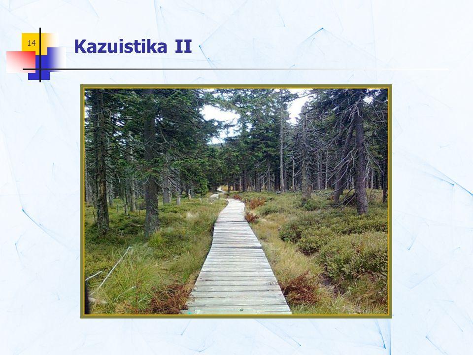14 Kazuistika II