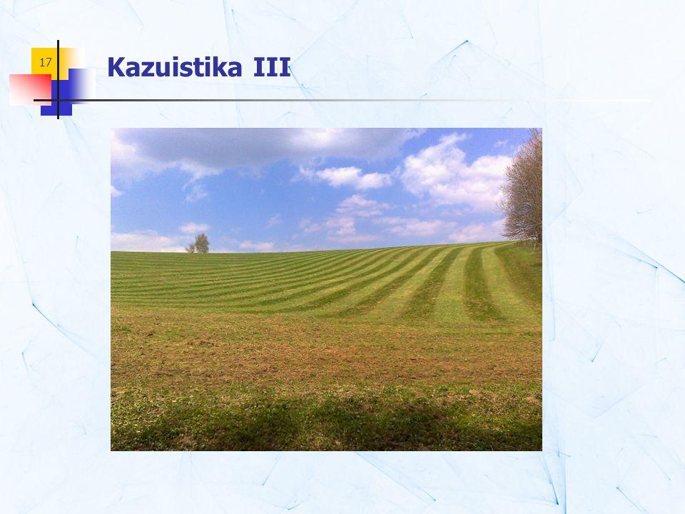 17 Kazuistika III