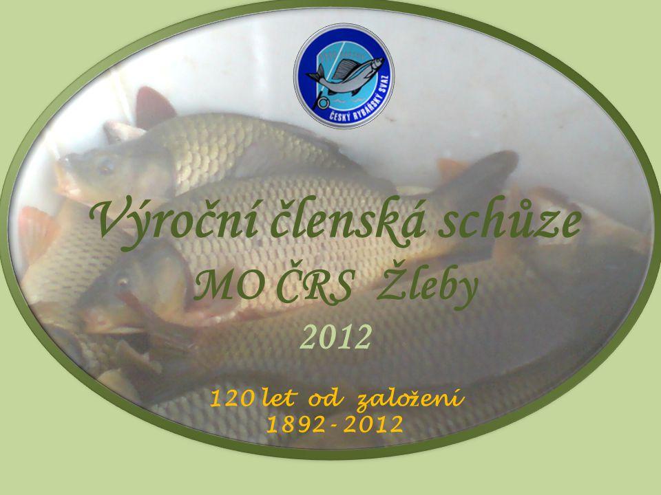 Finanční zpráva za rok 2011