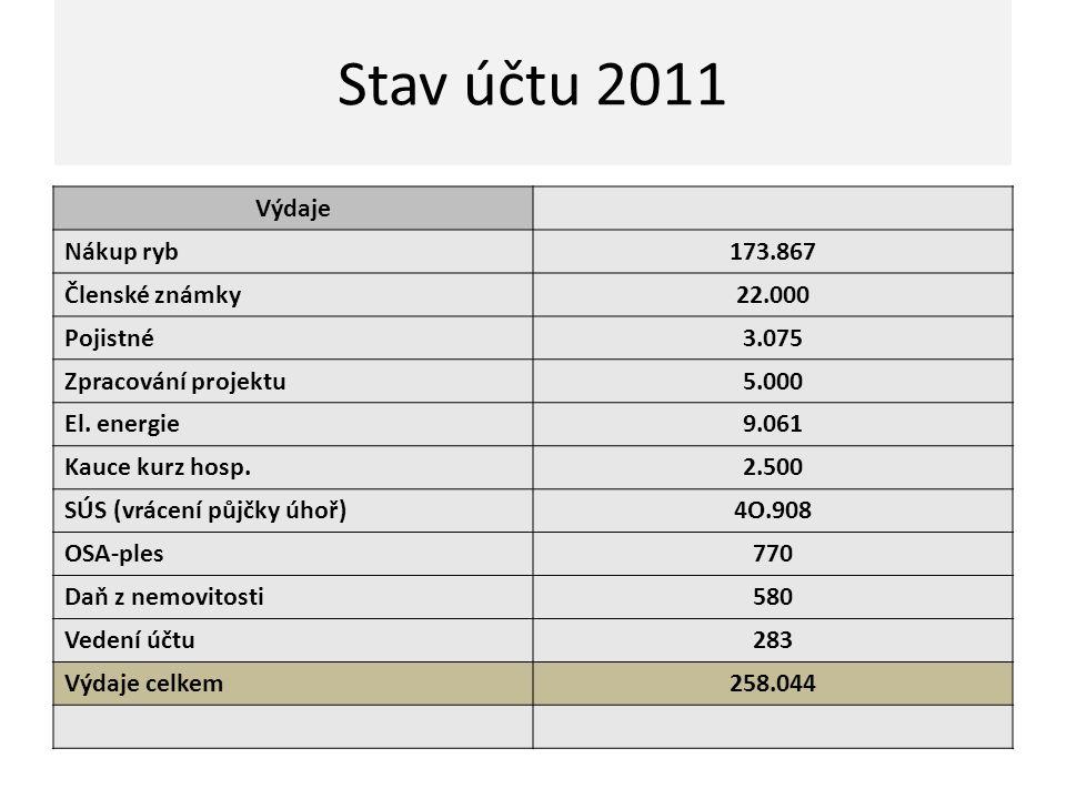 Stav pokladna 2011 Počáteční stav 1.1.2011 63.587 Kč Příjmy Povolenky98.650 Čl.příspěvky38.500 Brigády14.000 Přísp.