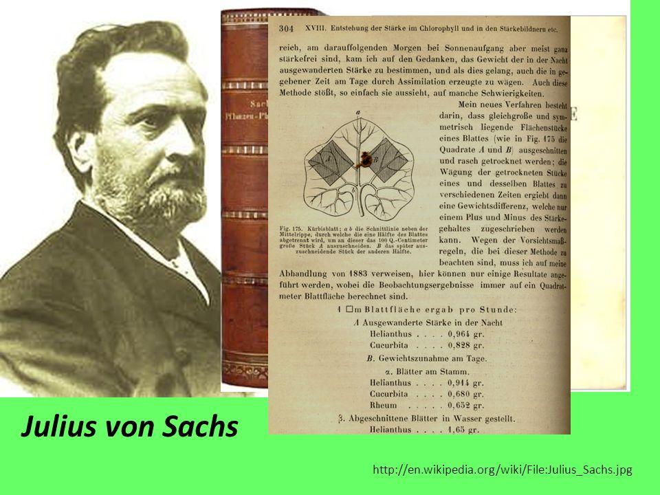 http://en.wikipedia.org/wiki/File:Julius_Sachs.jpg Julius von Sachs