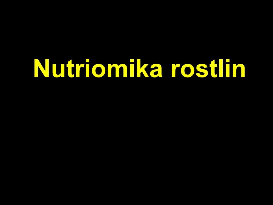 Nutriomika rostlin