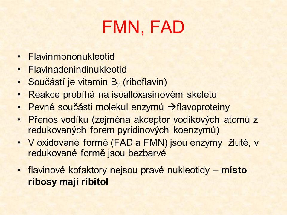 FMN, FAD •Flavinmononukleotid •Flavinadenindinukleotid •Součástí je vitamin B 2 (riboflavin) •Reakce probíhá na isoalloxasinovém skeletu •Pevné součás