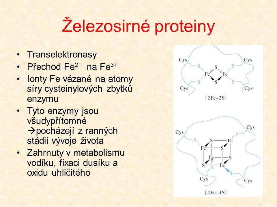 Železosirné proteiny •Transelektronasy •Přechod Fe 2+ na Fe 3+ •Ionty Fe vázané na atomy síry cysteinylových zbytků enzymu •Tyto enzymy jsou všudypřít