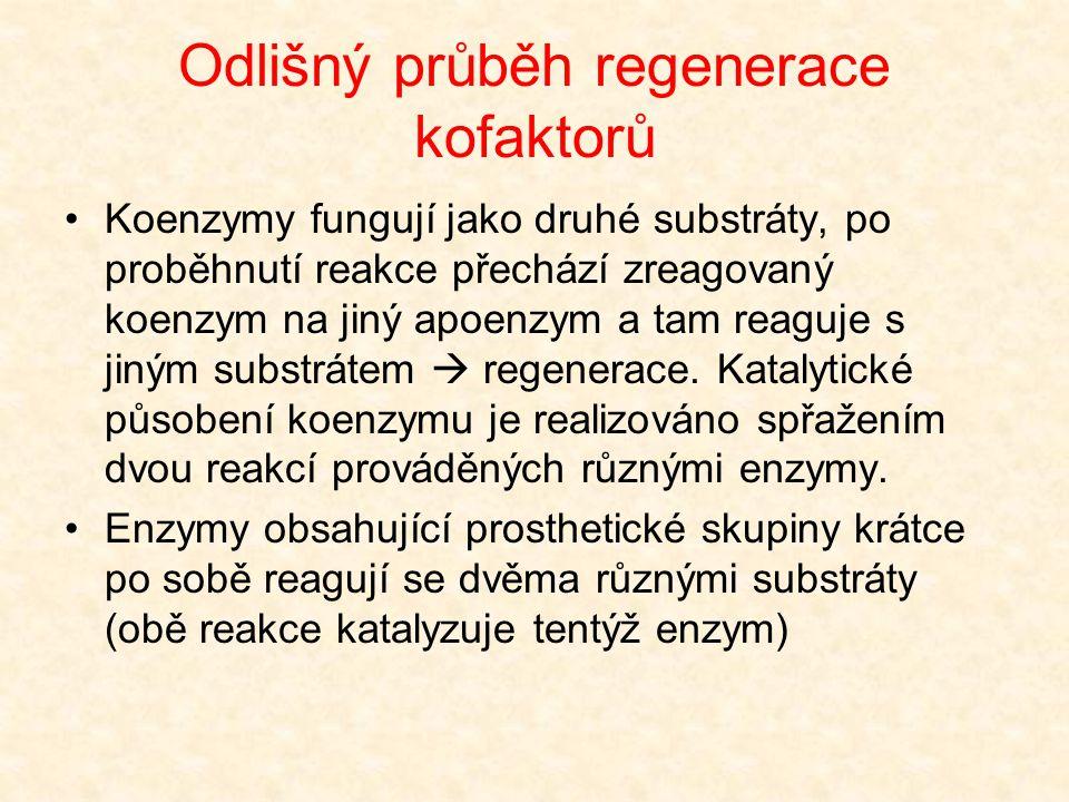 Odlišný průběh regenerace kofaktorů •Koenzymy fungují jako druhé substráty, po proběhnutí reakce přechází zreagovaný koenzym na jiný apoenzym a tam re