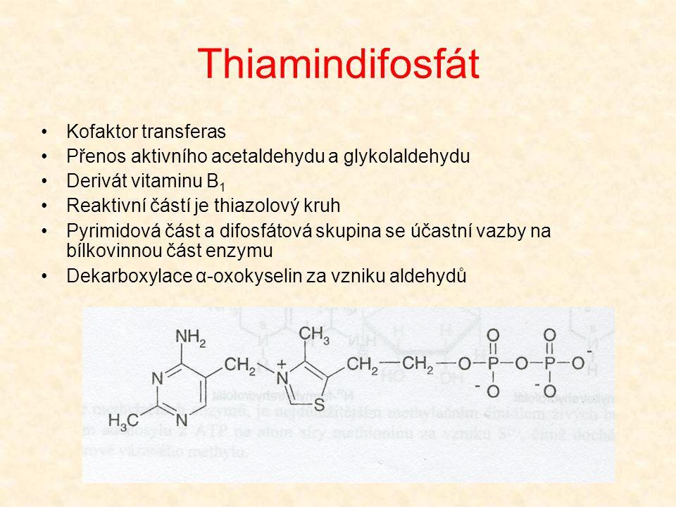 Thiamindifosfát •Kofaktor transferas •Přenos aktivního acetaldehydu a glykolaldehydu •Derivát vitaminu B 1 •Reaktivní částí je thiazolový kruh •Pyrimi