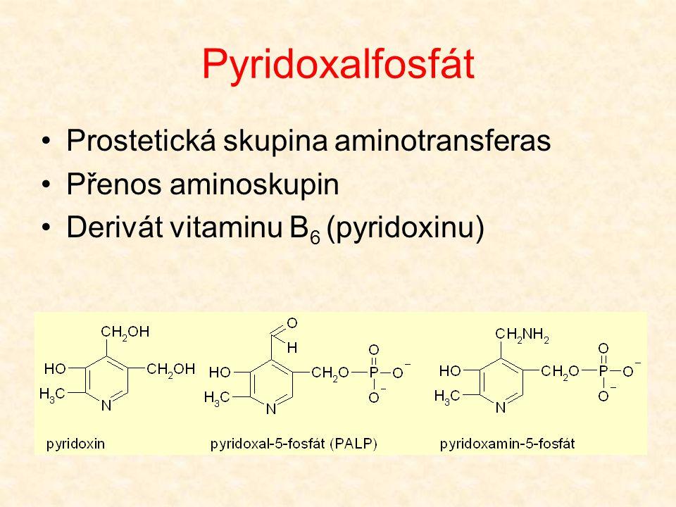 Pyridoxalfosfát •Prostetická skupina aminotransferas •Přenos aminoskupin •Derivát vitaminu B 6 (pyridoxinu)