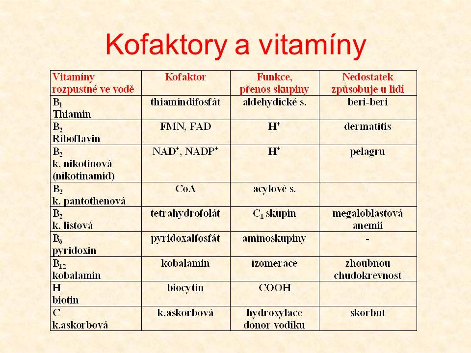 Kyselina listová •je syntetizována rostlinami (jako vitamín poprvé nalezena v listech špenátu) •pro živočichy a některé mikroby je kyselina listová esenciální •nedostatek vede u savců k anemii a poruchám růstu •biochemickým symptomem nedostatku kyseliny listové je porucha biosyntézy purinů a pyrimidinového derivátu thyminu •řada mikroorganismů tvoří kofaktor z jednotlivých složek •sulfonamidy - deriváty kyseliny 4-aminobenzensulfonové vytěsňují kyselinu 4-aminobenzoovou - zabrání se tím tvorbě folátu a zastaví se růst mikrobů = nejstarší chemoterapeutika - rezistentní jsou mikroorganismy neschopné tvořit folát z jeho složek kyselina 4-aminobenzensulfonová