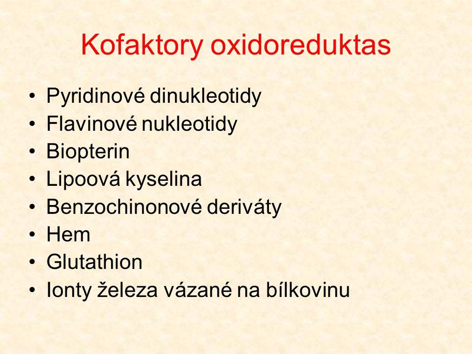 Kofaktory oxidoreduktas •Pyridinové dinukleotidy •Flavinové nukleotidy •Biopterin •Lipoová kyselina •Benzochinonové deriváty •Hem •Glutathion •Ionty ž