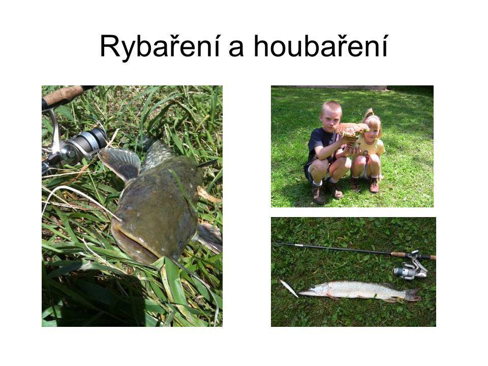 Rybaření a houbaření