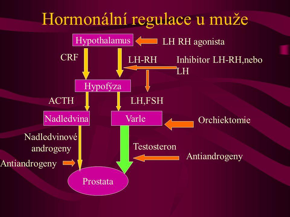 Hormonální regulace u muže Hypothalamus Hypofýza NadledvinaVarle Prostata LH-RH LH,FSH Testosteron CRF ACTH Nadledvinové androgeny Orchiektomie LH RH agonista Inhibitor LH-RH,nebo LH Antiandrogeny