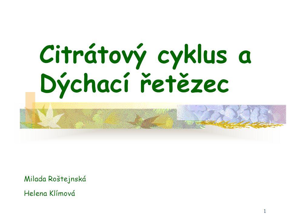 1 Citrátový cyklus a Dýchací řetězec Milada Roštejnská Helena Klímová