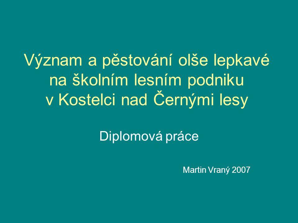 Význam a pěstování olše lepkavé na školním lesním podniku v Kostelci nad Černými lesy Diplomová práce Martin Vraný 2007