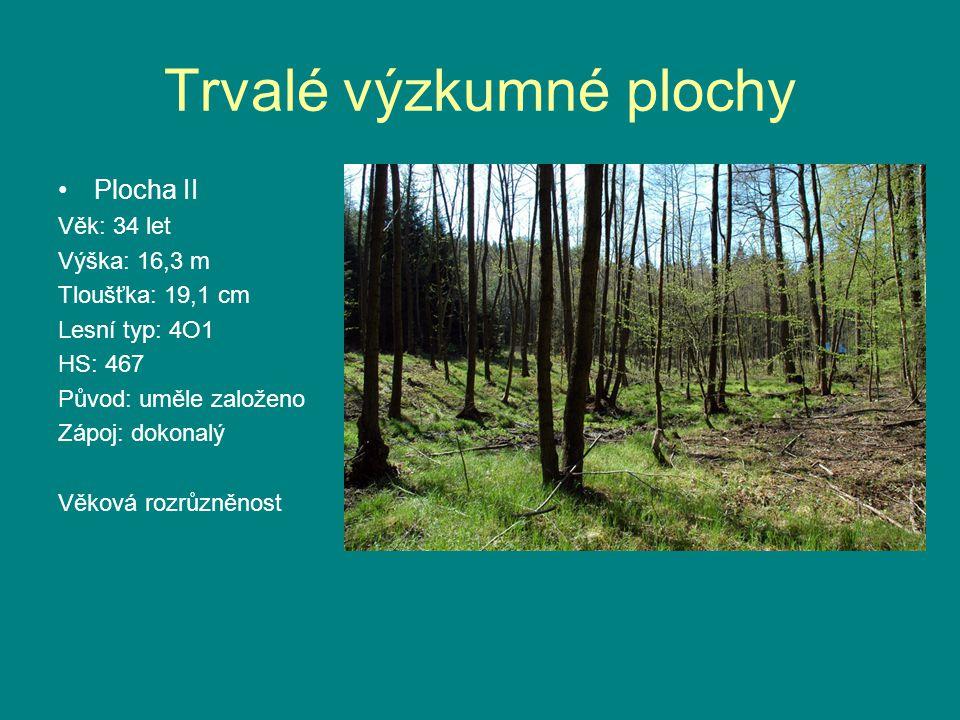 Trvalé výzkumné plochy •Plocha II Věk: 34 let Výška: 16,3 m Tloušťka: 19,1 cm Lesní typ: 4O1 HS: 467 Původ: uměle založeno Zápoj: dokonalý Věková rozrůzněnost