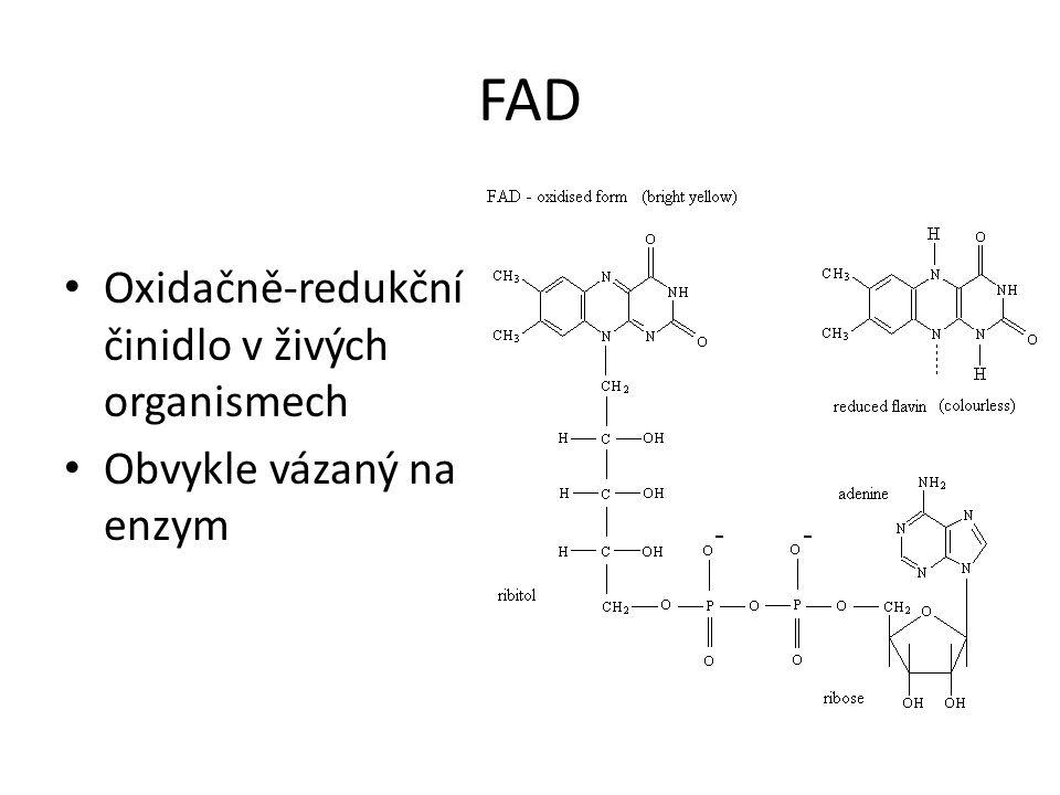 FAD • Oxidačně-redukční činidlo v živých organismech • Obvykle vázaný na enzym
