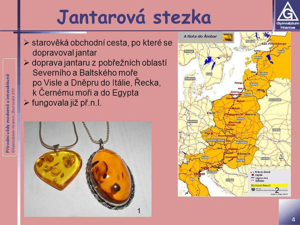 Přírodní vědy moderně a interaktivně ©Gymnázium Hranice, Zborovská 293 Jantarová stezka  starověká obchodní cesta, po které se dopravoval jantar  do
