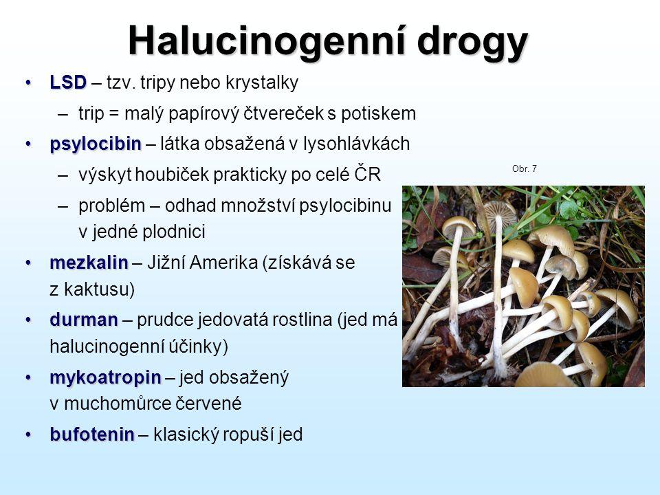 Halucinogenní drogy •LSD •LSD – tzv. tripy nebo krystalky –trip = malý papírový čtvereček s potiskem •psylocibin •psylocibin – látka obsažená v lysohl