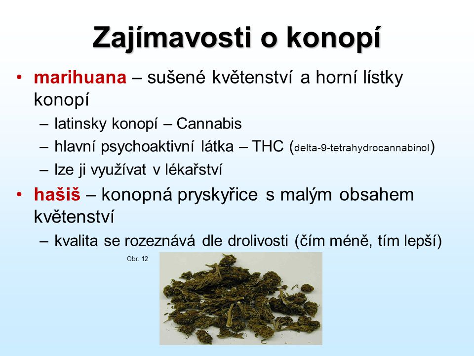 Zajímavosti o konopí •marihuana – sušené květenství a horní lístky konopí –latinsky konopí – Cannabis –hlavní psychoaktivní látka – THC ( delta-9-tetr