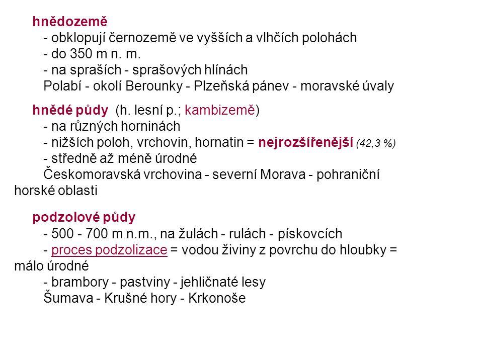 hnědozemě - obklopují černozemě ve vyšších a vlhčích polohách - do 350 m n. m. - na spraších - sprašových hlínách Polabí - okolí Berounky - Plzeňská p