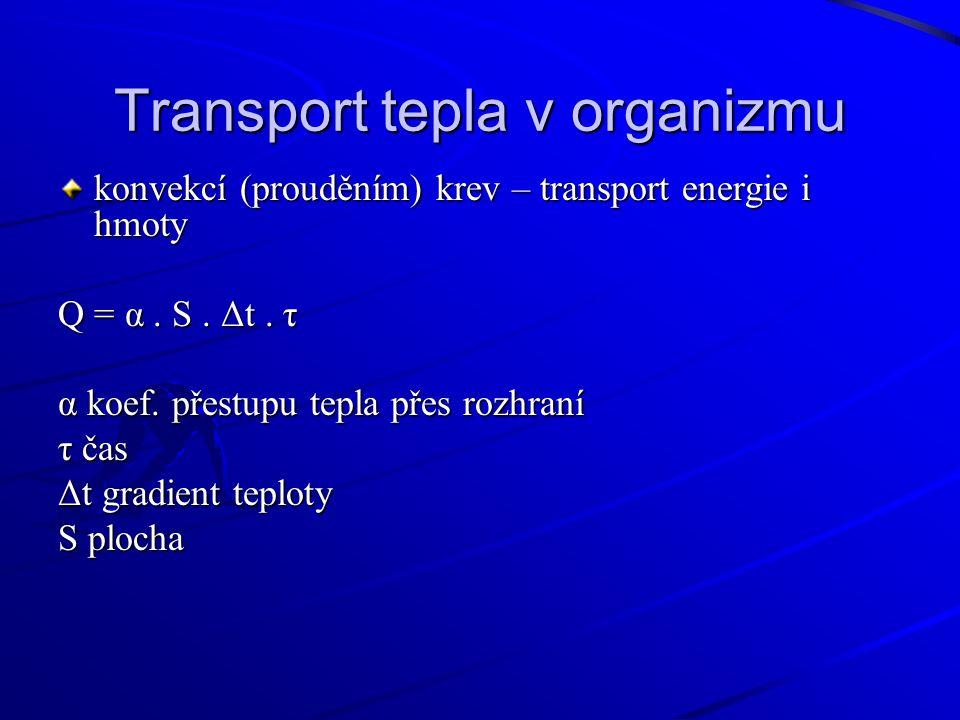 Transport tepla v organizmu konvekcí (prouděním) krev – transport energie i hmoty Q = α.