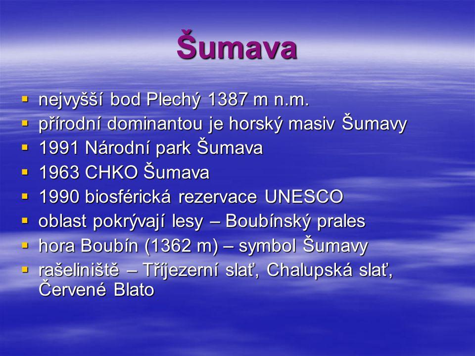 Šumava  nejvyšší bod Plechý 1387 m n.m.