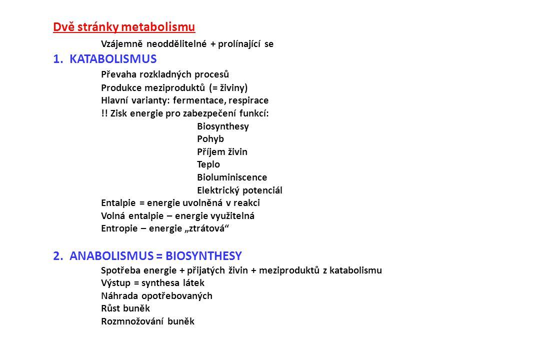Dvě stránky metabolismu Vzájemně neoddělitelné + prolínající se 1. KATABOLISMUS Převaha rozkladných procesů Produkce meziproduktů (= živiny) Hlavní va