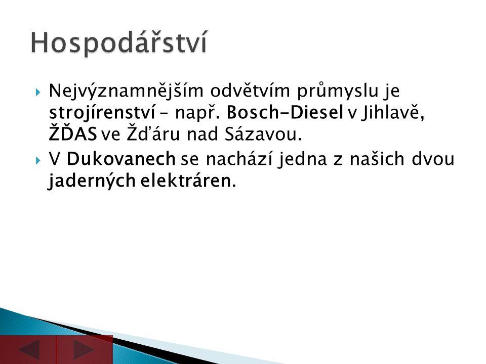  Nejvýznamnějším odvětvím průmyslu je strojírenství – např. Bosch-Diesel v Jihlavě, ŽĎAS ve Žďáru nad Sázavou.  V Dukovanech se nachází jedna z naši