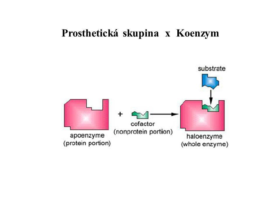 Prosthetická skupina x Koenzym