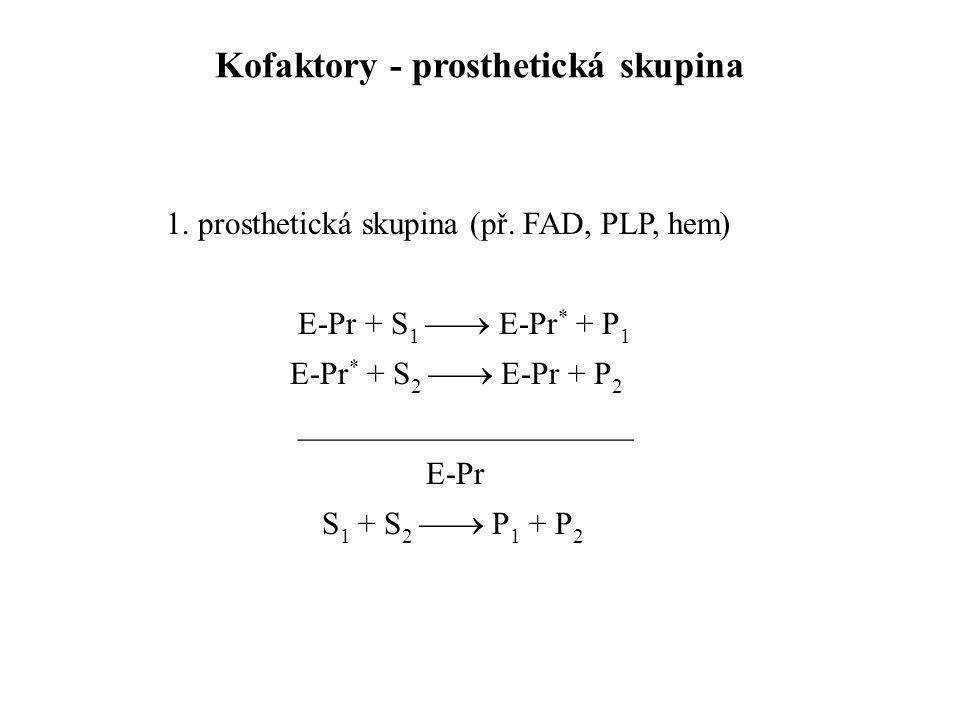 1. prosthetická skupina (př. FAD, PLP, hem) E-Pr + S 1  E-Pr * + P 1 E-Pr * + S 2  E-Pr + P 2 _____________________ E-Pr S 1 + S 2  P 1 + P 2 Ko
